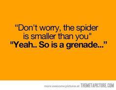 Eeek a spider!!!