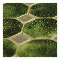 zielone listki (proj. Karolina Gletkier)