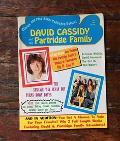 Vintage David Cassidy and the Partridge by BrownstoneBasement