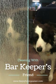 Bar Keepers Friend will remove hard water stains from glass shower doors.