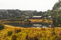 Travel Guide: Cradle Mountain, Tasmania - Love Swah