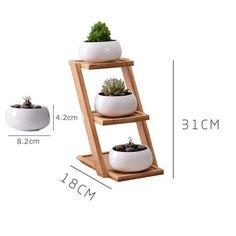 Bamboo Planter, Bamboo Shelf, House Plants Decor, Plant Decor, Succulent Garden Diy Indoor, Succulent Planters, Indoor Herbs, Indoor Gardening, Succulents Garden