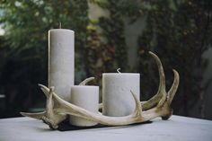 deconstructed antler candelabra - 3 pieces of red deer antler, balanced with three hand-made candles and a hand-cut slate base.