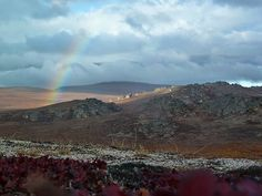 Serpentine Rainbow by Bering Land Bridge National Preserve, via Flickr