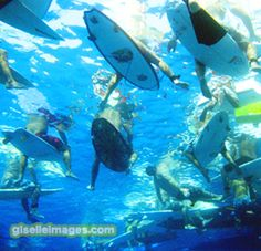 We are the only full-service surf shop and school located on the beginner beach, Kahalu'u Bay, in Kona HI. We offer gear rentals and lessons. Surfing Tips, Kona Hawaii, Surf Shop, Snorkeling, Dream Vacations, Kayaking, Surfboard, Beach, Diving