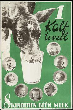 Eén kalf teveel 8 kinderen géén melk.
