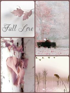 Pink and Gray Mood Colors, Colours, Nature Pictures, Beautiful Pictures, Color Collage, Autumn Lights, Beautiful Collage, Color Balance, Everything Pink