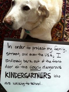 Keeping the country safe … from KINDERGARTNERS!Sunny is a timid dog so you would never suspect that he is plotting to rid the country of…View Postshared via WordPress.com