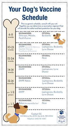 Dog Vaccine Schedule Chart >>> Want to know more, click on the image. #DogsCare101