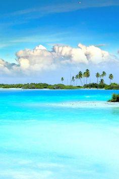 looks like Paradise...