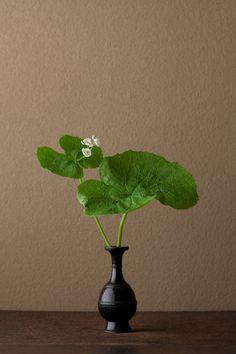 Today's Ikebana by Toshiro Kawase, Japan (9/6/2012)