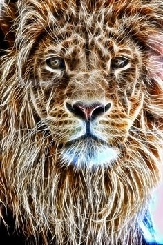 Elegant Beauty: Fractal African Male Lion.