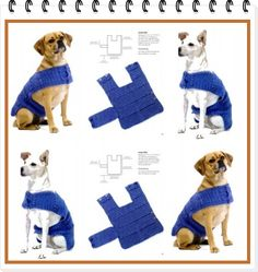 "enrHedando: different tutorials for dog ""clothes"" this one pictured is handy for keeping the animal warm - has videos and basic patterns for Xmas costume, dog hoodies...etc."
