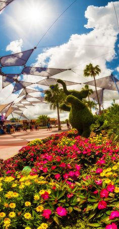 Tips & info about Epcot's spring event--even if you don't care about gardening, this is awesome!