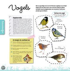 Vogels Outdoor Learning, Flora And Fauna, Animals For Kids, Pre School, Winter Wonderland, Blog, Ideas, Animal Crafts, Biology