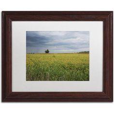 Trademark Fine Art Ohio Countryside Canvas Art by Kurt Shaffer, White Matte, Wood Frame, Size: 16 x 20, Blue