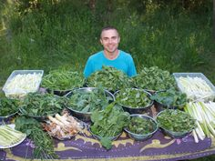 Simple Rules to Foraging for Free Wild Food  Homesteading  - The Homestead Survival .Com