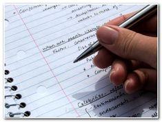 Nursing essay writing The Knox School