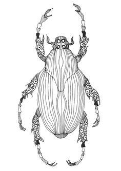 Beetle illustration by krisztiballa #krisztiballa #beetle #illustration #insect #animalillustration #bw #details