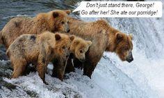 Symdaddy Humour: 110. Goldilocks:The Escape!