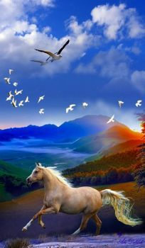 Science Discover Welcome to the community of fans Pictures nature Pretty Horses Beautiful Horses Beautiful Birds Animals Beautiful Beautiful Nature Pictures Beautiful Nature Wallpaper Beautiful Landscape Photography Beautiful Landscapes Horse Wallpaper Beautiful Horse Pictures, Most Beautiful Horses, Pretty Horses, Beautiful Birds, Animals Beautiful, Beautiful Landscape Photography, Beautiful Landscapes, Horse Wallpaper, Beautiful Nature Wallpaper
