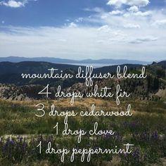 01 - Mountain - white fir_cedarwood_clove_peppermint