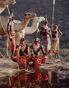 A group of Samburu at a watering hole in Kenya. The Samburu are a Nilotic people of north-central Kenya that are related to, but distinct from, the Maasai. The Samburu are semi-nomadic pastoralists who herd mainly cattle but also keep sheep, goats and camels.