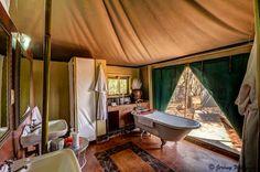 Gallery - White Elephant Safari Lodge & Bush Camp