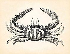 Crabe océan mer vie Marine Vintage imprimable Image graphique Antique Clip Art transfert Art impression numérique jpg jpeg png instantanée Télécharger V128 par DigitalDesignVault sur Etsy https://www.etsy.com/fr/listing/190135823/crabe-ocean-mer-vie-marine-vintage