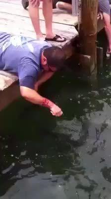Feeding the fish - Gifline Funny As Hell, Haha Funny, Funny Memes, Hilarious, Jokes, Funny Stuff, Funny Videos, Funny Shit, Funny Things