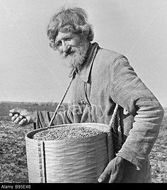 Russian peasant scattering the field with seeds - prior to the Bolshevik Revolution in 1917