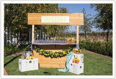 Garden Glam Ponte Winery Wedding