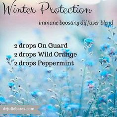 Winter Protection - immunity boosting diffuser blend