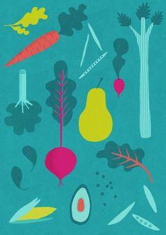 illustrations | designlovefest