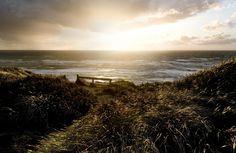 natur strand Lyngdal