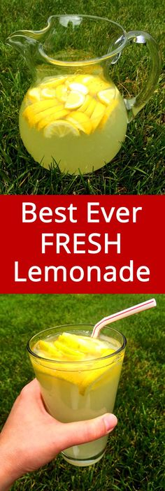 OMG the best ever! Love this lemonade! This is the only lemonade recipe I'll ever need! This homemade freshly squeezed lemonade is the best you'll ever taste! This lemonade is award winning! So lemony, so refreshing, so delicious! Fruit Drinks, Smoothie Drinks, Non Alcoholic Drinks, Healthy Drinks, Smoothie Recipes, Beverages, Martini Recipes, Juice Drinks, Best Lemonade