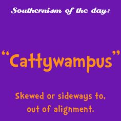 Omg I say this too often, and I'm not even a southern girl! Southern Words, Southern Phrases, Southern Humor, Southern Pride, Southern Quotes, Southern Charm, Southern Heritage, Simply Southern, Southern Living