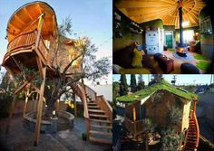 irish treehouse from treehouse masters so cool - Treehouse Masters Irish Cottage