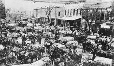 Cotton-marketing day, Marietta, Georgia - 1905