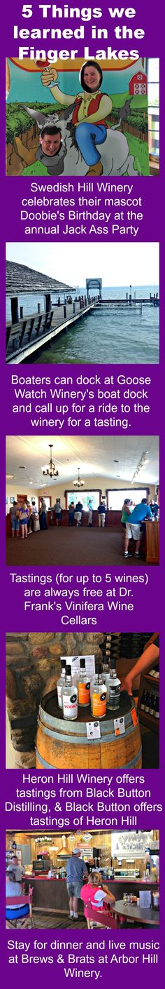 Our staff visited 5 wineries in the Finger Lakes recently and here is what we learned. 5 great tips for your next Rochester/Finger Lakes trip.