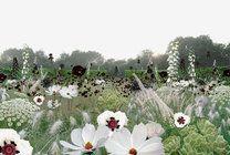 One side white. Garden of Escher, Chaumont-sur-Loire
