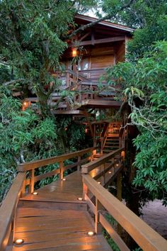 "Animal Planet provides us the ""Tree House Masters"" and their wonderful tree houses, this one is the Irish Cottage by Pete Nelson. Treehouse Masters, Treehouse Living, Treehouse Ideas, Beautiful Tree Houses, Cool Tree Houses, Amazing Tree House, Tree House Plans, Irish Cottage, Tree House Designs"
