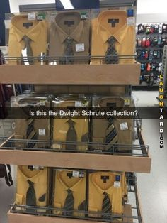 Is this Dwight Schrute collection