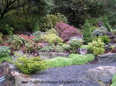 Beautiful garden with dry river bed