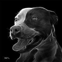greyscale pitbull fractal pop art by artist James Ahn - 7773