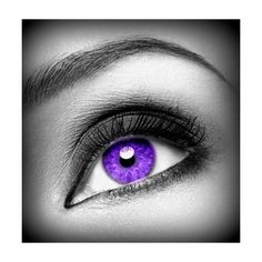 Color- Purple ❤ liked on Polyvore featuring beauty products, makeup, eye makeup, eyes, purple eye makeup and purple makeup