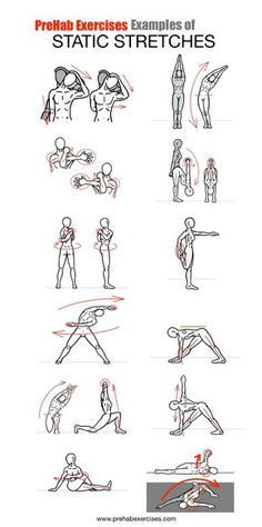 Stretches - Examples of Static Stretches