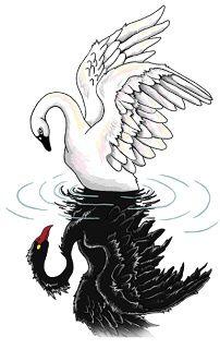 black swan and white swan tumblr - Pesquisa Google