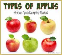 21+Apple+Types+and+A+Yummy+Apple+Dumpling+Recipe