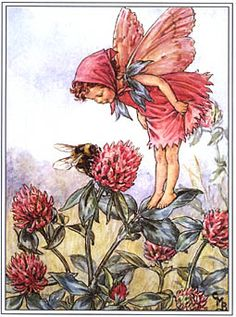 Flower's Fairy This fairy looks just like me when I was little. The Red Clover Fairy